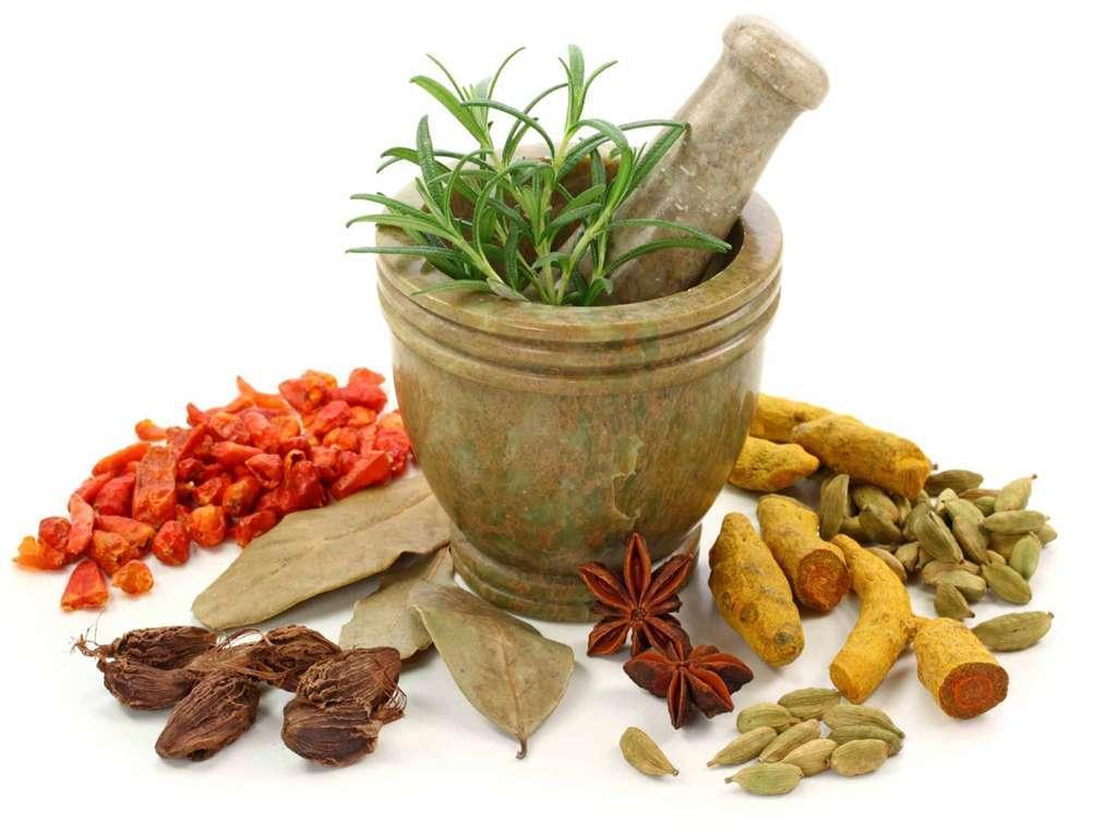 فراوری داروی بیماری ها با استفاده از گیاهان دارویی، به دست جوانان اردبیلی