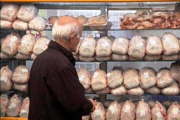 نوسانات نرخ مرغ در بازار، افزایش جزئی قیمت نسبت به روز گذشته