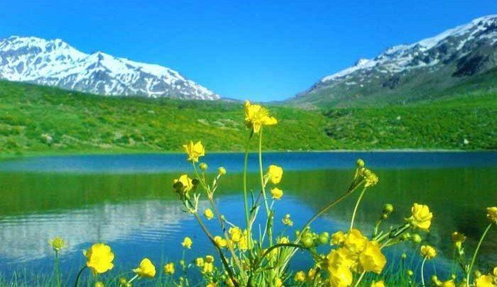با تور طبیعت گردی به دل هیجانها سفر کنید