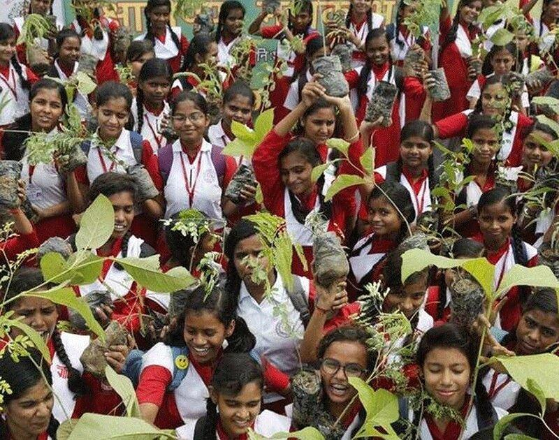کاشت 220 میلیون اصله درخت در هند در یک روز