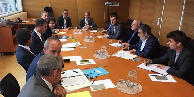رایزنی صالحی و رئیس کمیسیون انرژی اتمی فرانسه در وین