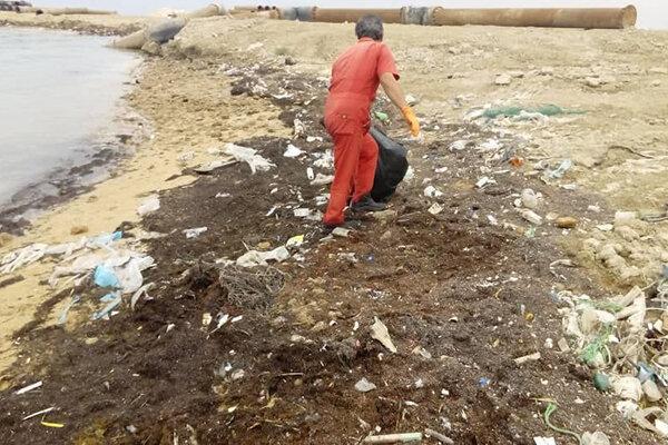 خط ساحلی مجتمع بندری نگین بوشهر پاک سازی شد